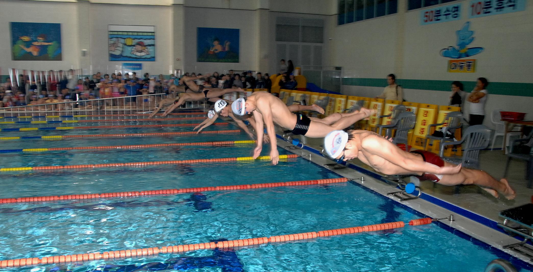 제1회 증평군수영연맹회장배 수영대회 성료 [이미지]